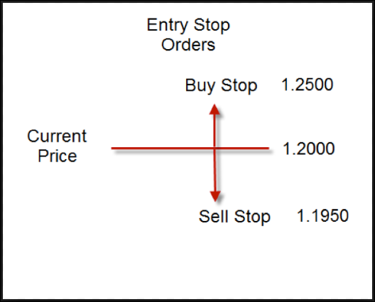 Buy Orders  Explained